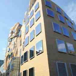 UTS Business School, Sydney - Frank Gehry 07_Stephen Varady Photo ©
