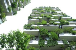 Bosco Verticale by Boeri Studio 11_Stephen Varady Photo ©