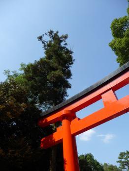 Fushimi Inari Taisha, Kyoto 04_Stephen Varady Photo ©