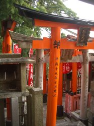 Fushimi Inari Taisha, Kyoto 24_Stephen Varady Photo ©