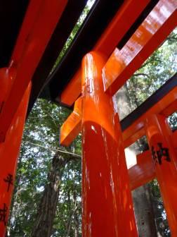 Fushimi Inari Taisha, Kyoto 28_Stephen Varady Photo ©