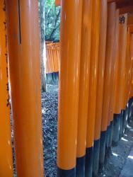 Fushimi Inari Taisha, Kyoto 35_Stephen Varady Photo ©
