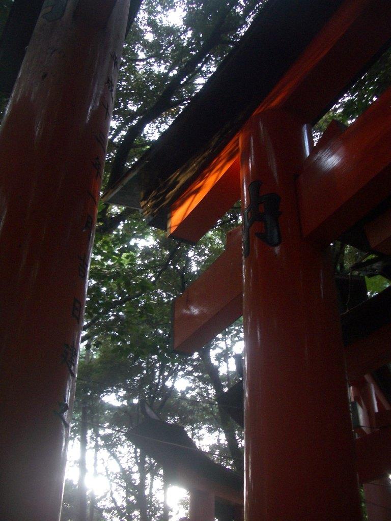 Fushimi Inari Taisha, Kyoto 40_Stephen Varady Photo ©